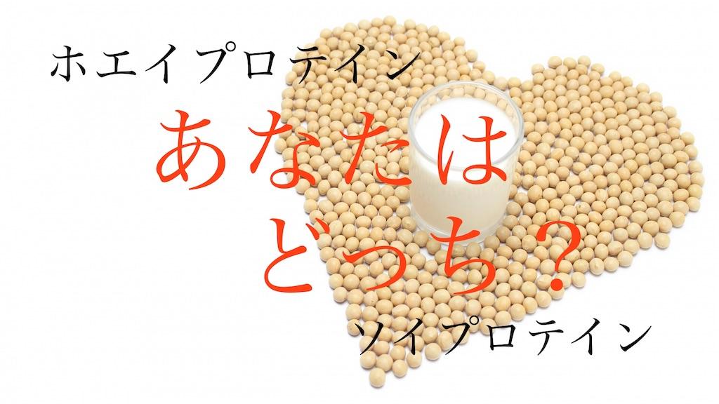 f:id:yumemiraitunagu:20191024043734j:image